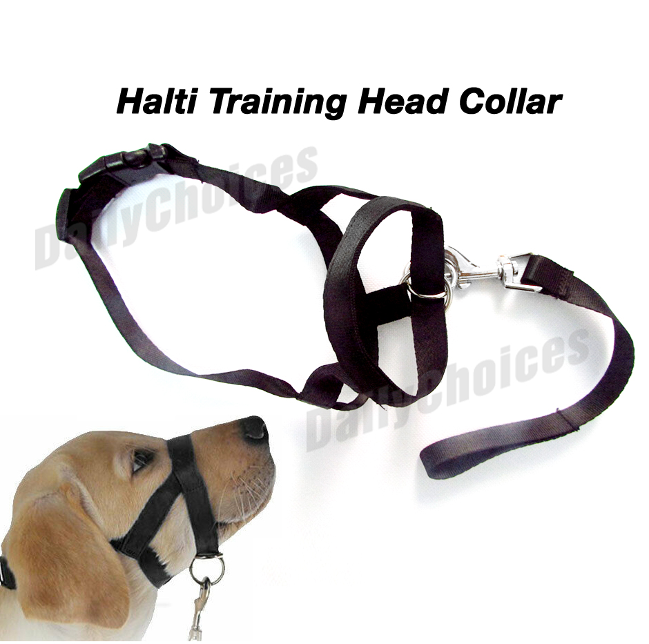 Dogalter Dog Halter Halti Training Head Collar Gentle Leader Harness Nylon Black